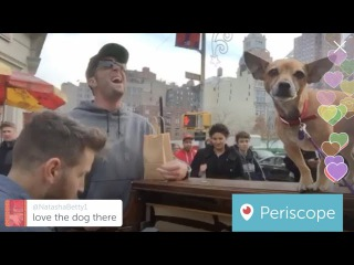 Spontaneous Maroon 5 Duet on Street Piano in NYC | Periscope Piano Man #4
