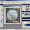 Adobe Photoshop для фотографов (базовый курс)