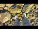 Walking on beautiful clean ice in Slovakian Mountains