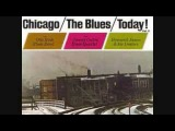 James Cotton - The Blues Keep Falling