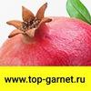 TOP GARNET - продвижение сайтов