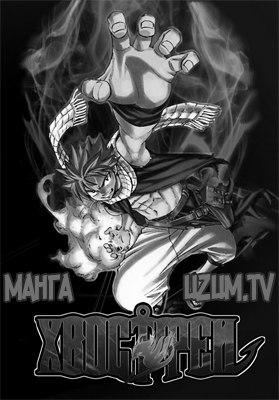 Манга Фейри Тейл / Fairy Tail манга