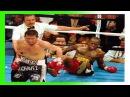 JULIO CESAR CHAVEZ BRUTAL KNOCKOUTS - BOXING HD