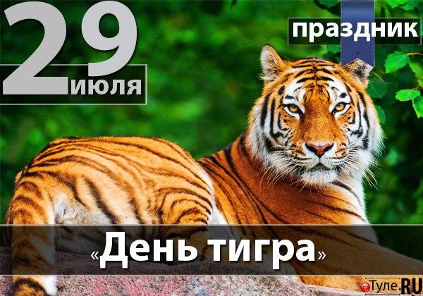 http://cs628230.vk.me/v628230264/afcf/p_llcJs9KDg.jpg