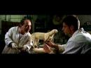 Таксидермист (2002) супер фильмы Опочтарение 2010