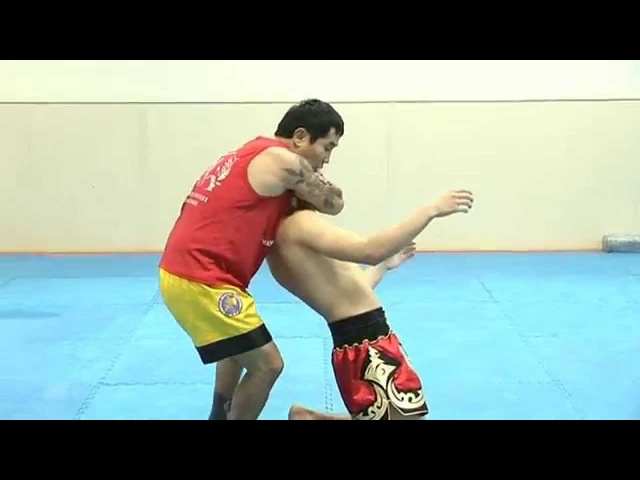 Лучшие Удушающие Приемы MMA