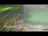 Xiaomi YI vs SJ4000 Unterwasser (Underwater) httpsvk.comyicamera