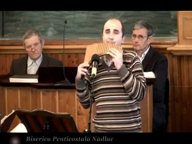 Viorel Manolache - Mergand prin lumea larga