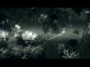WoDotA - Shadow Fiend - The Grim Reaper.