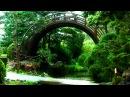 Zen Garden Rain- 2.5 hours Relaxation, Peace Meditation (no music, just rain)