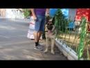 Трой Форт Аданте ( Тагир + Вео Росс Энигма), 10 мес