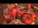 Любимые сорта Баклажаны огурцы томаты запрос