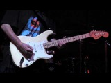 WALTER TROUT -