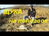 Ловля щуки на живца поплавочной удочкой-Оснастка