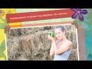 Выращивание огурцов под деревом На газетке