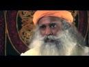 Индийский йогин и мистик Джагги Васудев рассказывает о природе страха