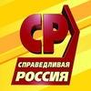 СПРАВЕДЛИВАЯ РОССИЯ в Самарской области