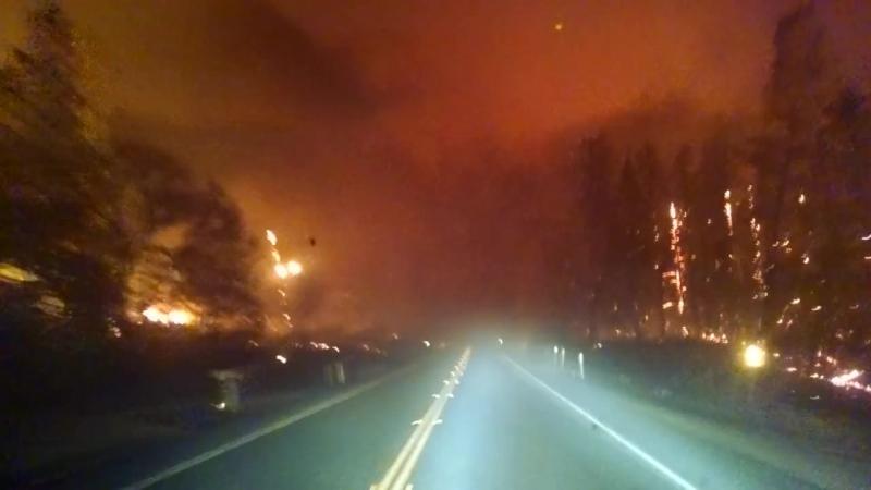 Водитель в Калифорнии спасается от лесного пожара