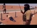 Расстрел людей в Сирии       (Kills truck drivers in Syria 18)         ..