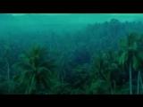 Xavier Cugat  Perfidia (Wong Kar-Wai  Days of Being Wild)