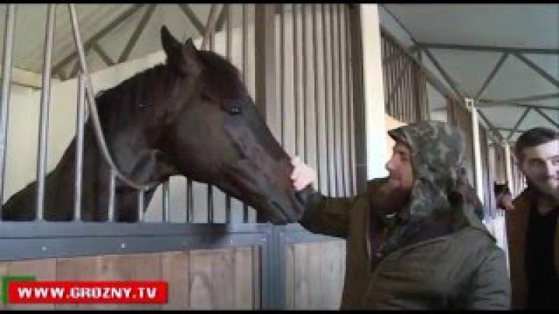 Рамзан Кадыров посетил конезавод и заповедник в Гудермесе 2016