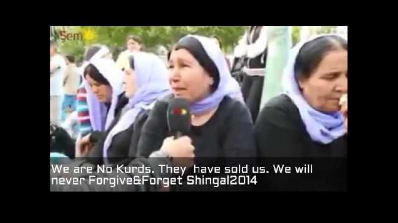 Проекция Шамса - Езиды не курды. Êzîdî Ne kurdin.