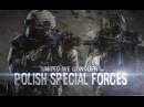 Polish Special Forces | United We Conquer