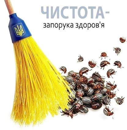 Число голландцев-сторонников ассоциации Украина-ЕС выросло до 44,5%, - соцопрос - Цензор.НЕТ 3964