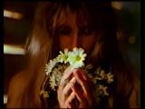 София Ротару-Весна, что нас свела с ума