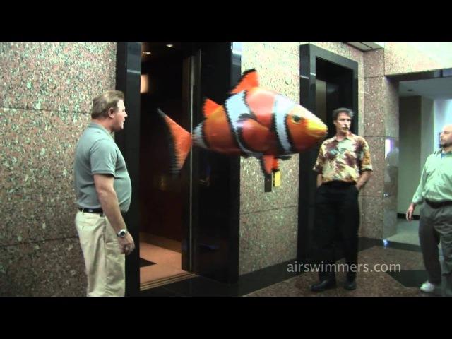 Летающие надувные рыбы на пульте управления