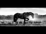 Hot Since 82 vs Joe T Vannelli feat. Csilla - The End (Official Video)