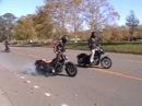Harley Wheelies 1 UNKNOWN Industries