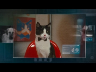 "Фильм ""Кошки против собак 2 : Месть Китти Галор / Cats & Dogs : The Revenge of Kitty Galore.""(2010)(США,Австралия)"