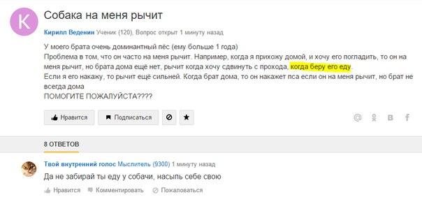 вопросы и ответы на майл.ру - фото 10