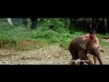 Честь дракона 2 (2013)