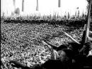 Сентябрь 1934. Речь Адольфа Гитлера в Нюрнберге.