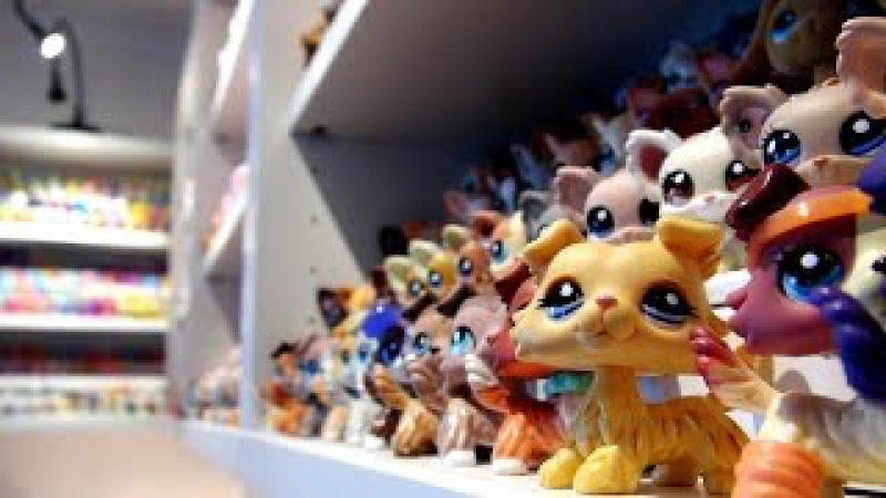 My Littlest Pet Shop Collection 1 500 LPS