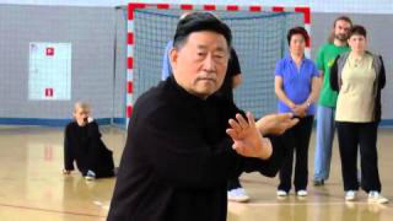 Tai Chi Forms 2 - Chen Xiao Wang