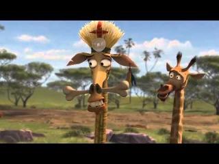 Animation Movies Full Movies English Madagascar: Escape 2 Africa