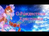 Винкс Клуб – Волшебное Рождество в компании!