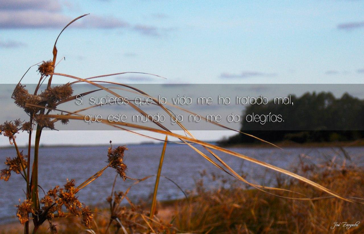 Frases rockeras en fotos mías