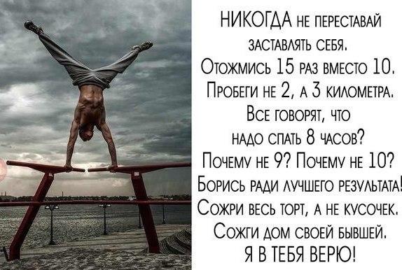 Михаил Медведев   Ростов