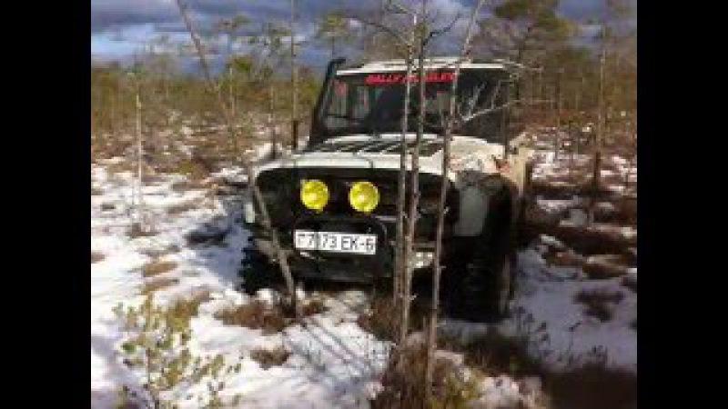 Разведка по Могилёвским болотам 6 февраля