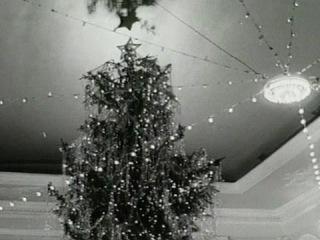 Запечатленное время. Огни новогодней елки