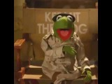 That's perfect! Kermit. Skype Moji