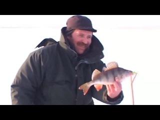 Ловля окуня зимой на балансир и мормышку в степных озерах