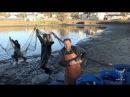 Облов рыбы на подсобном хозяйстве Оптиной пустыни