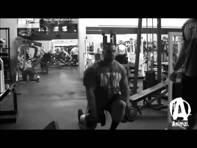 Evan Centopani Motivation
