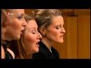 Bach, Matthäus-Passion BWV 244. Herreweghe