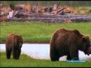 Путешествие на край света с Артом Вульфом Аляска Катмай